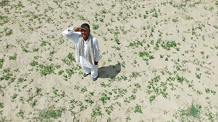 Guar farmer look a drone