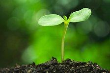 coatings-sustainability