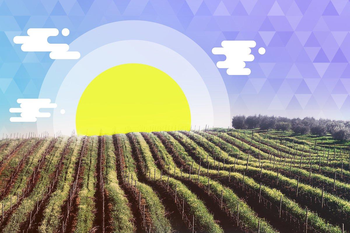 aider les agriculteurs  u00e0 cultiver tout en pr u00e9servant l