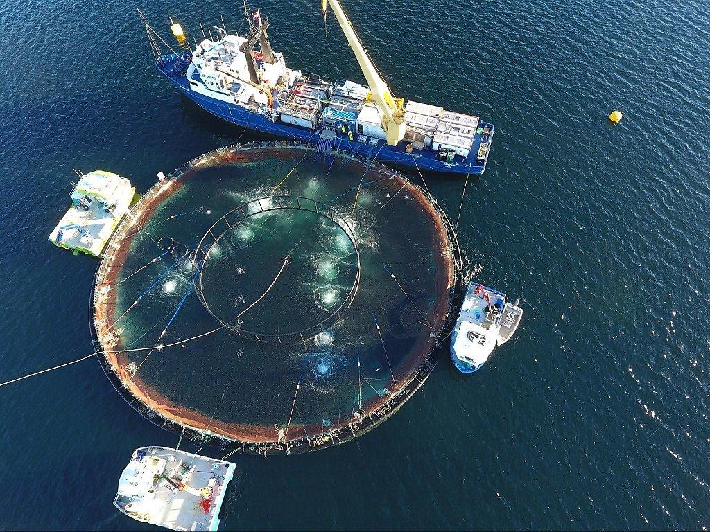 Aquaculture-1