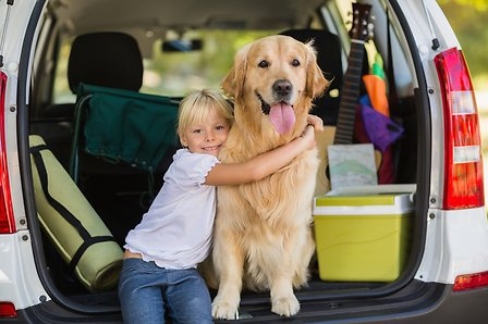 Little girl and dog into a car