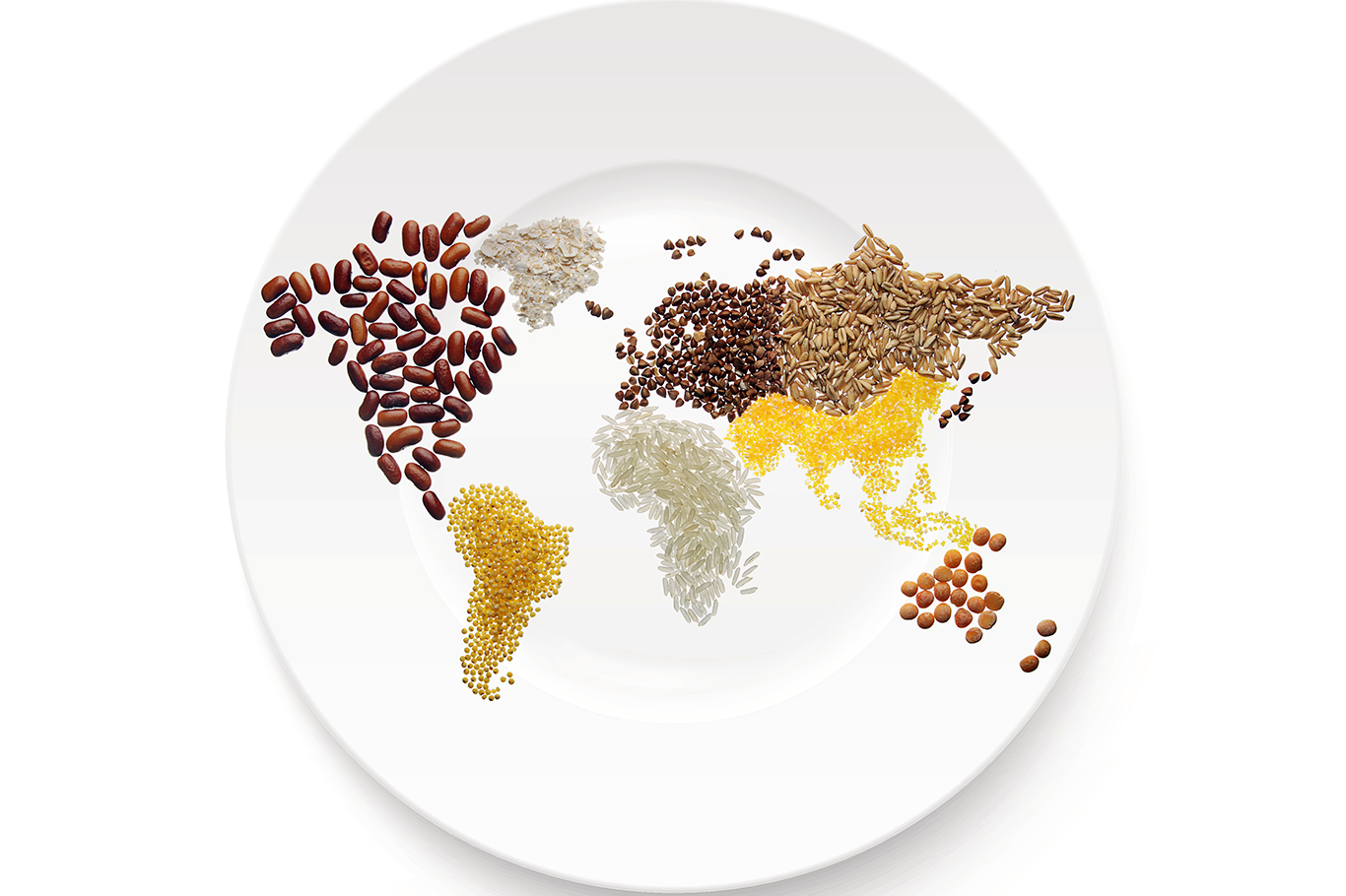 sustainable-food-in-a-plate-in-a-world-map-shape