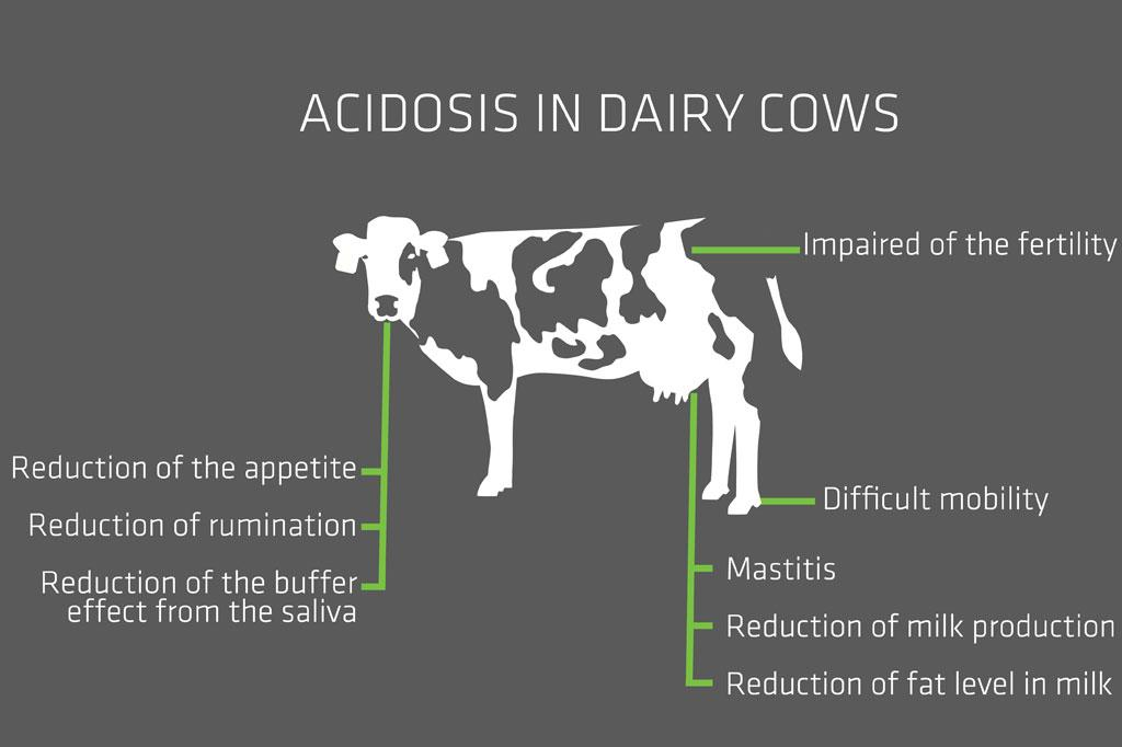acidosis-ENG-178754