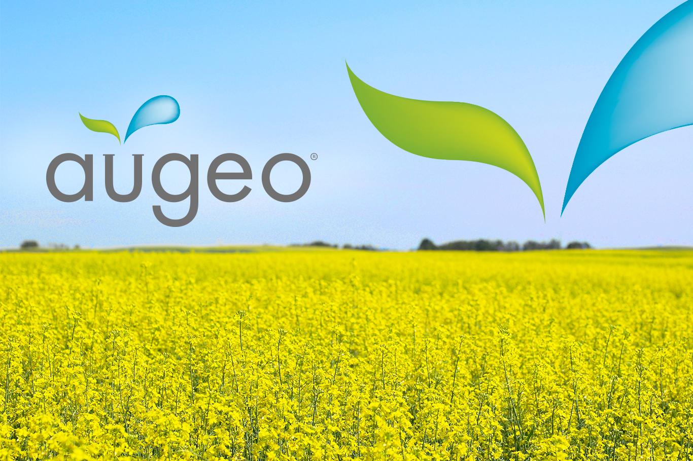 augeo-banner